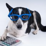 Lillian Turner-Bowman's Under-Utilized Pet Tax Deductions